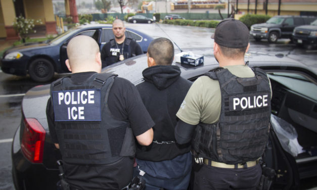212 Illegals Arrested, 122 Businesses Targeted In Los Angeles By ICE